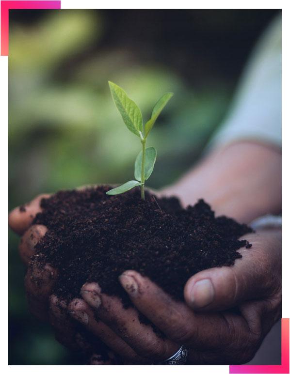 Responsabilité environnementale